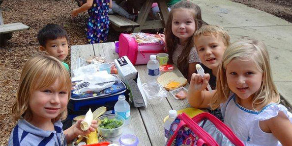 picnic pals lunch